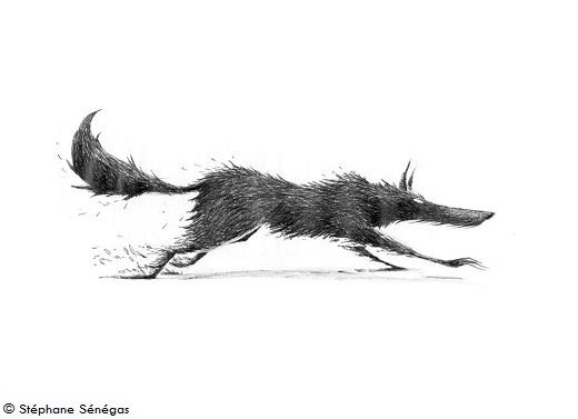 anuki - le loup